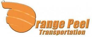 OrangePeel_WEB